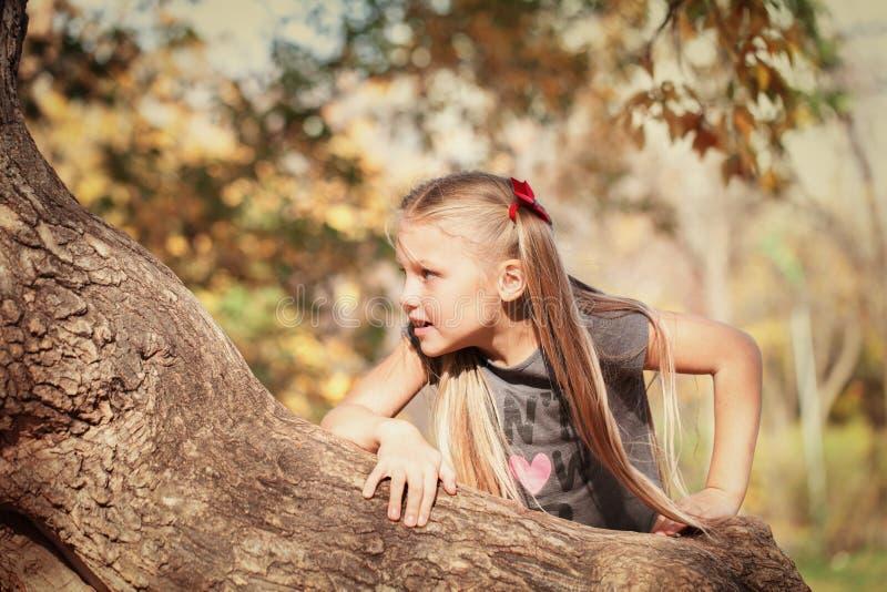 Ritratto della ragazza allegra bella nel parco di autunno, fotografia stock libera da diritti