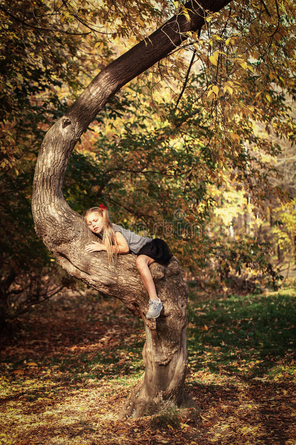 Ritratto della ragazza allegra bella nel parco di autunno, fotografia stock