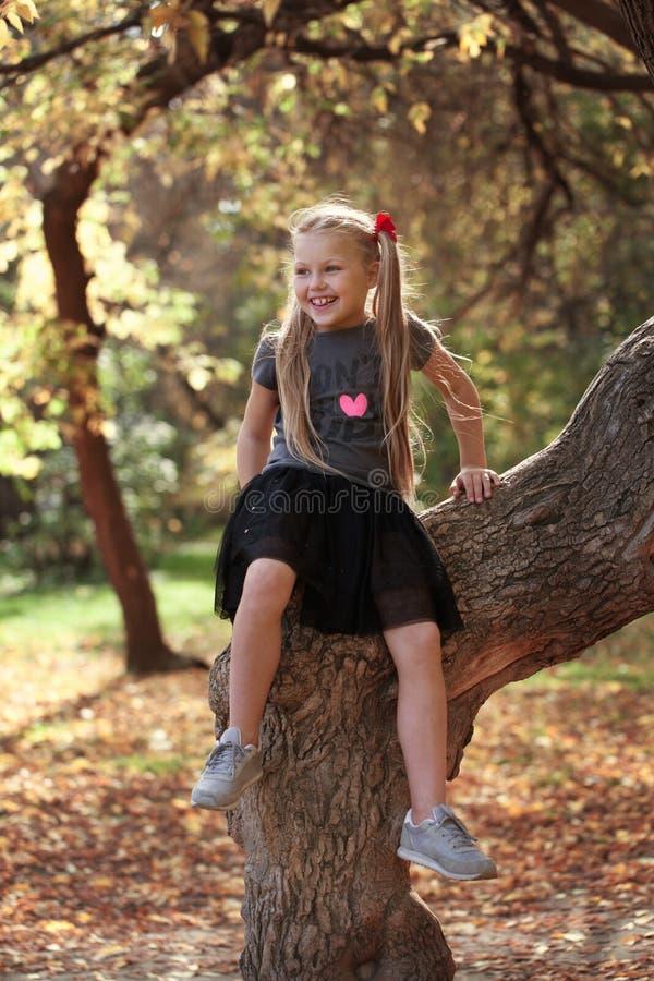 Ritratto della ragazza allegra bella nel parco di autunno, fotografie stock