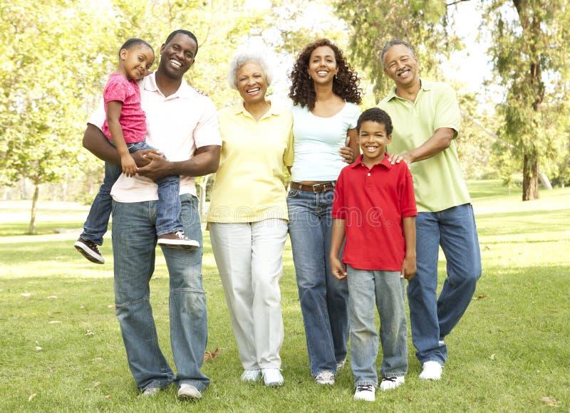 ritratto della sosta del gruppo della famiglia allargata fotografia stock libera da diritti