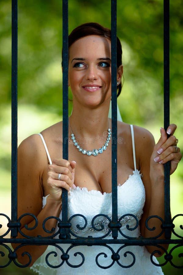Ritratto della sposa fotografia stock