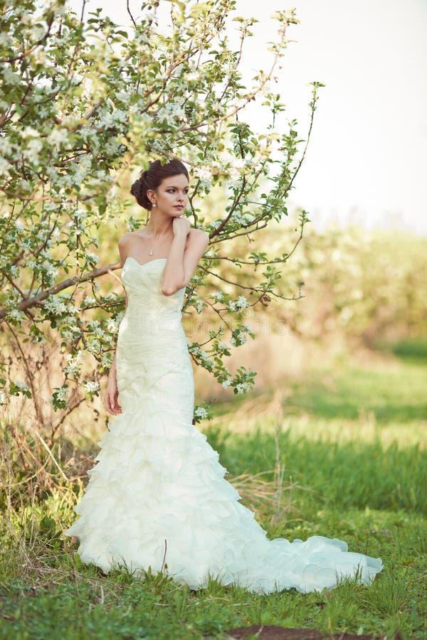 Ritratto della sposa di Beautidul fotografia stock libera da diritti