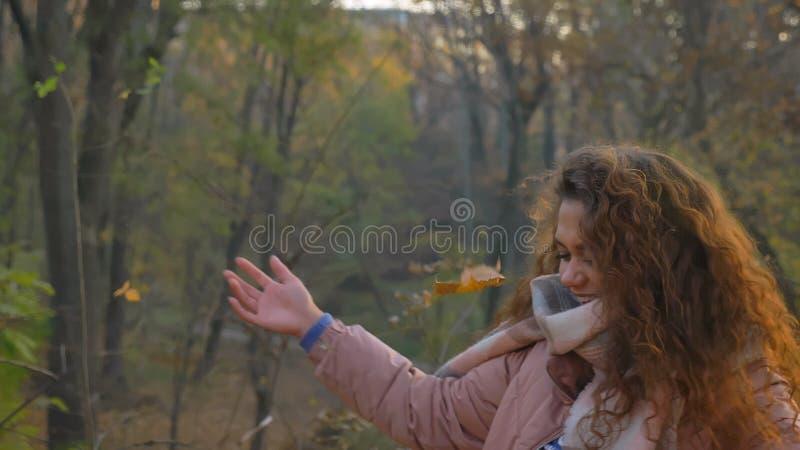 Ritratto delle foglie di lancio sorridenti della ragazza caucasica riccio-dai capelli felicemente in parco autunnale fotografie stock