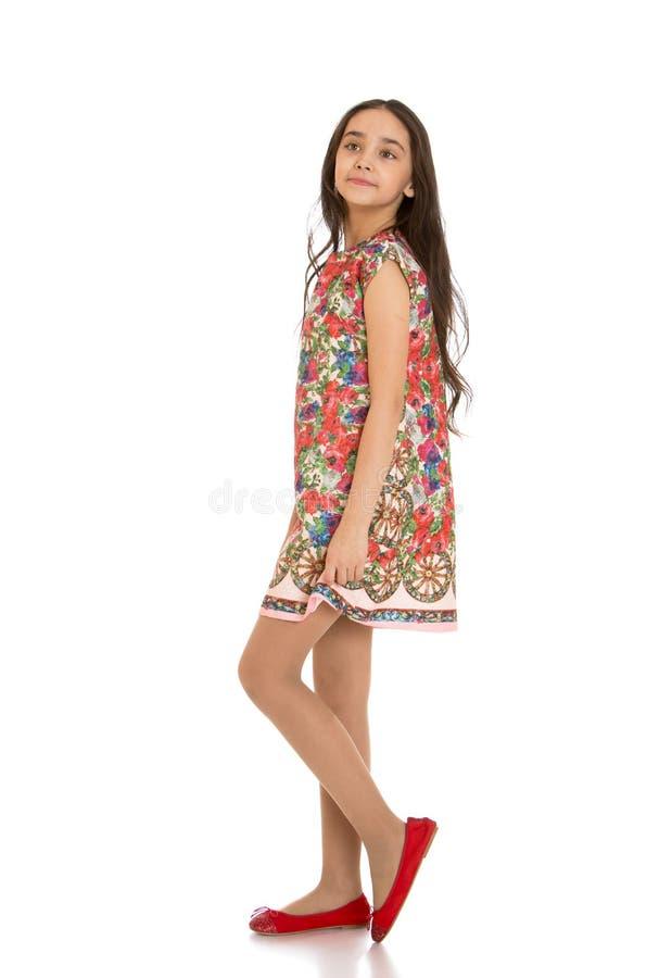 Ritratto delle ragazze esili, belle, more dentro fotografia stock libera da diritti