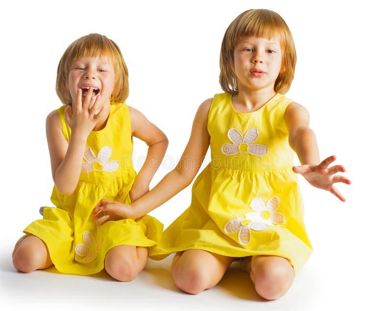 Ritratto delle sorelle gemellate allegre che abbracciano e che sorridono alla camma immagini stock libere da diritti