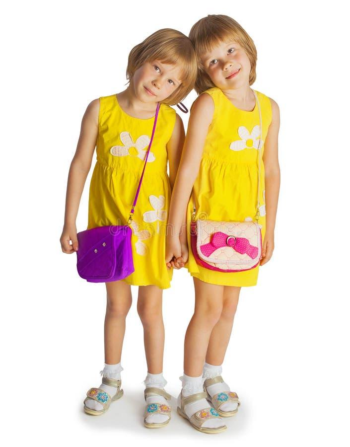 Ritratto delle sorelle gemellate allegre che abbracciano e che sorridono alla camma fotografie stock