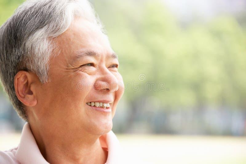 Ritratto delle spalle e capo dell'uomo cinese maggiore fotografia stock