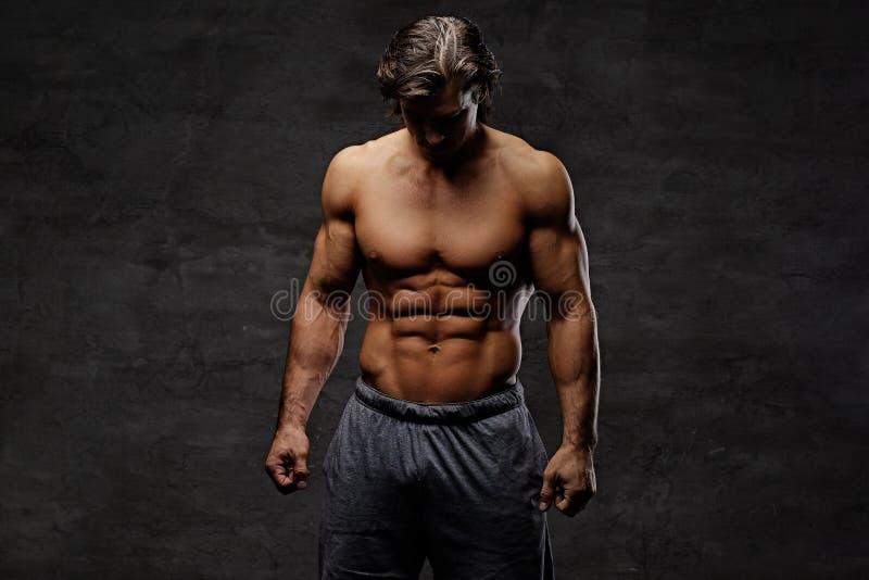 Ritratto dello studio del maschio muscolare senza camicia fotografia stock libera da diritti
