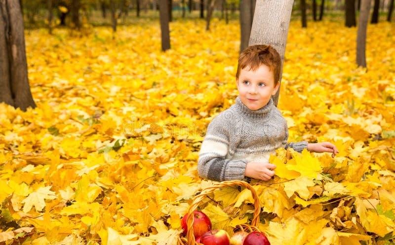 Ritratto di autunno di bello bambino Ragazzino felice con le foglie nel parco nella caduta immagine stock