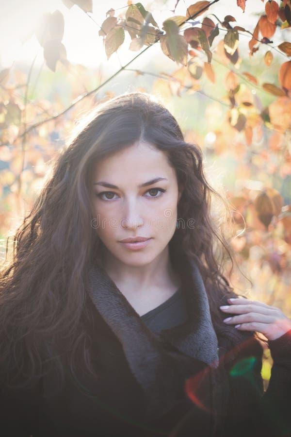 Ritratto di autunno della giovane donna nel chiarore all'aperto del sole dei vestiti caldi immagini stock