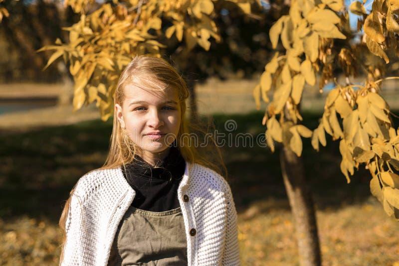 Ritratto di autunno di giovane studentessa graziosa fotografia stock