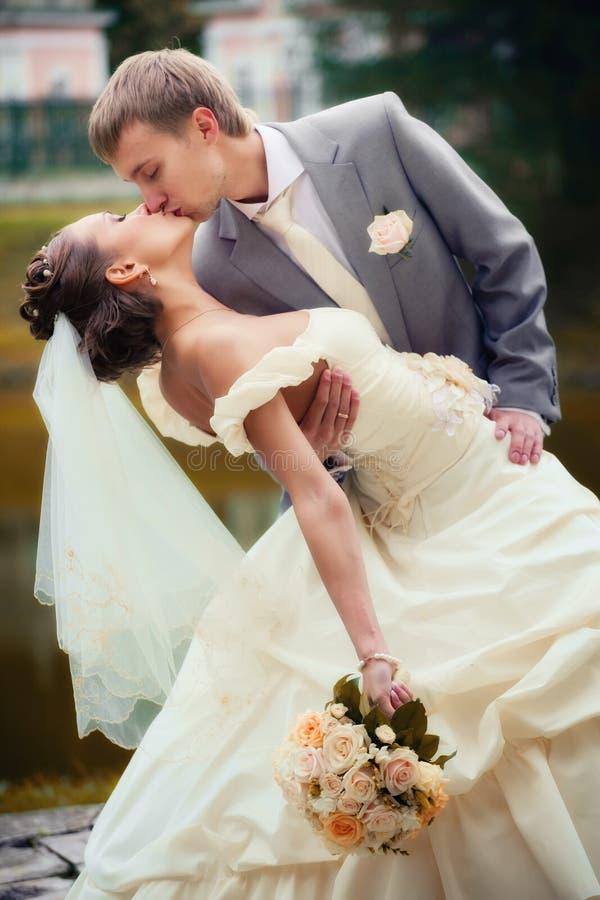 Ritratto di baciare i newlyweds immagine stock libera da diritti
