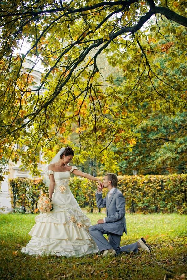 Ritratto di baciare i newlyweds fotografie stock libere da diritti