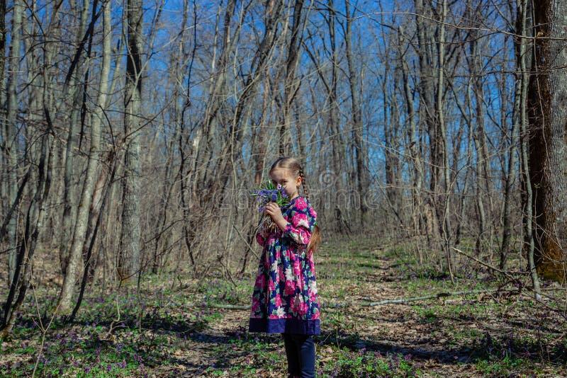 Ritratto di bella bambina con i fiori del corydalis fotografie stock libere da diritti