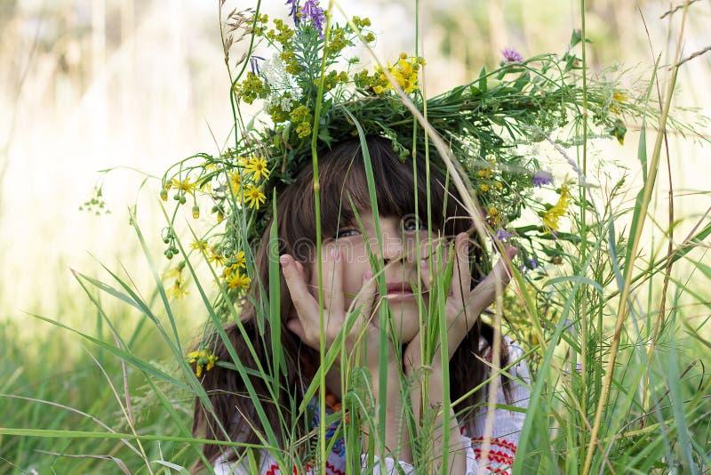 Ritratto di bella bambina con un garlang variopinto sulla sue testa e mani sotto il suo mento in alta erba verde su un prato fotografia stock libera da diritti