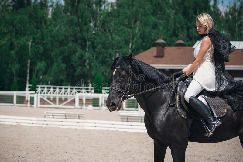 Ritratto di bella donna che monta un cavallo rider fotografia stock libera da diritti