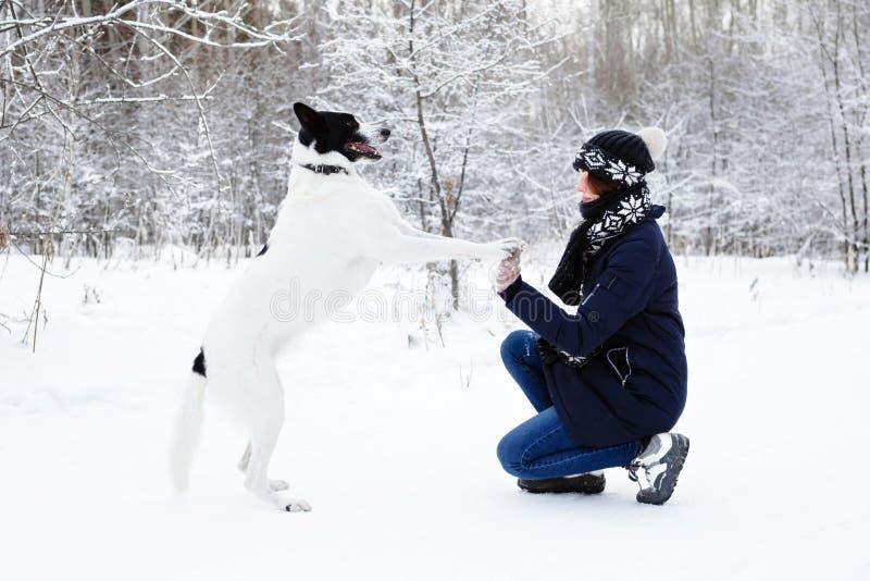 Ritratto di bella giovane donna con il suo cane bianco nero su un fondo della foresta di inverno immagine stock libera da diritti