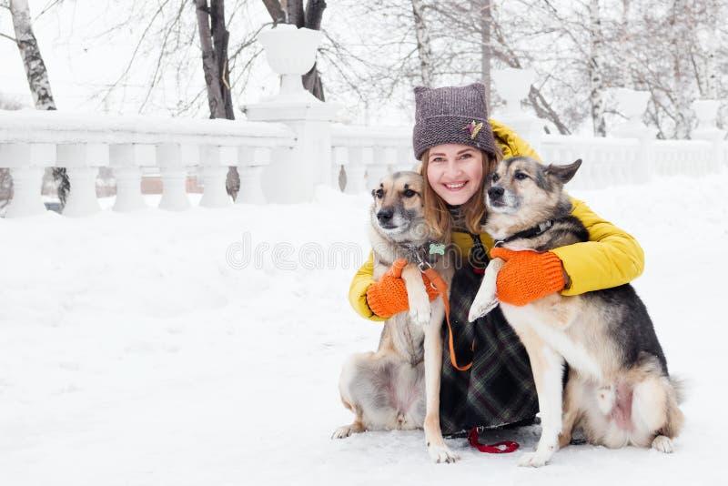 Ritratto di bella giovane donna sorridente con i suoi due cani in un parco nevoso di inverno immagine stock