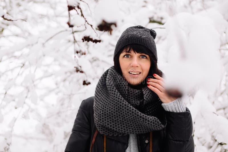 Ritratto di bella ragazza nella foresta di inverno fotografia stock