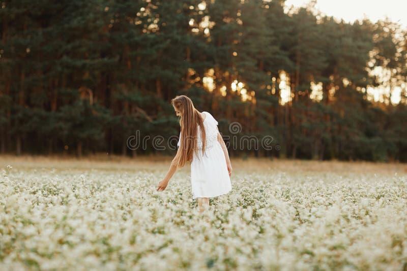 Ritratto di bella ragazza in un vestito bianco in un campo di fioritura Campo dei fiori Estate Unità con la natura fotografia stock