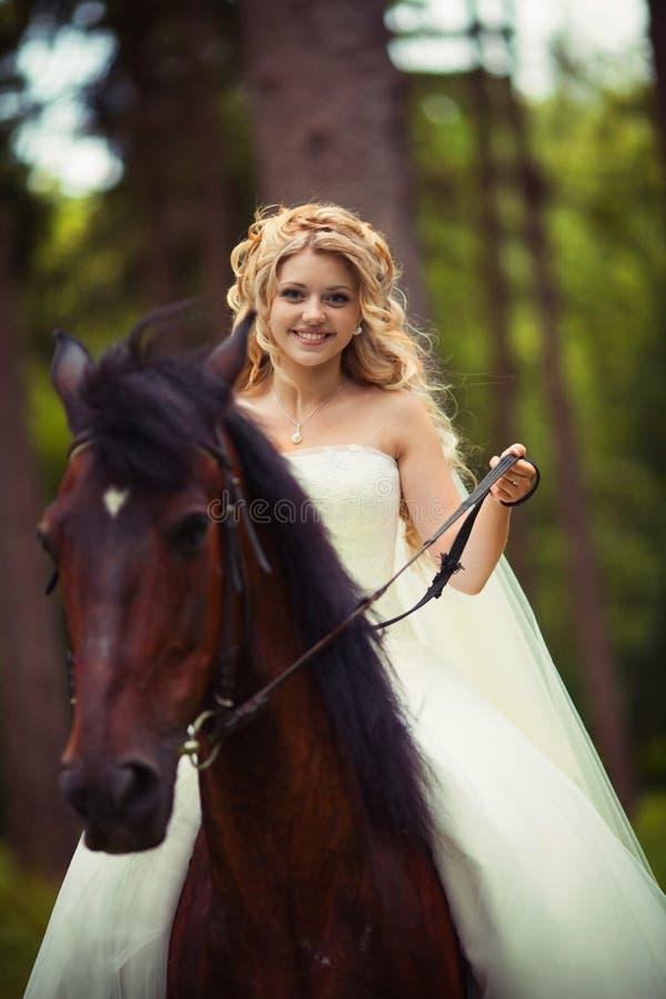 Ritratto di bella sposa con il cavallo immagine stock