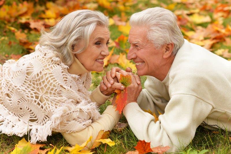 Ritratto di belle coppie senior che si rilassano nel parco fotografia stock libera da diritti