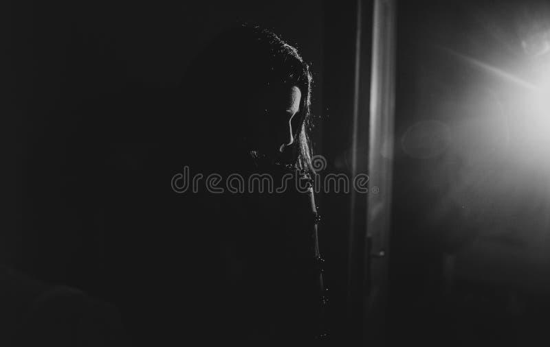 Ritratto di bellezza della donna elegante sensuale Ragazza con la h riccia lunga immagine stock libera da diritti