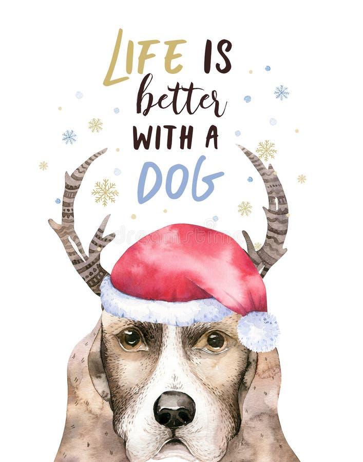 Ritratto di Buon Natale del primo piano dell'acquerello del cane sveglio Isolato su priorità bassa bianca Nuovo anno domestico do royalty illustrazione gratis