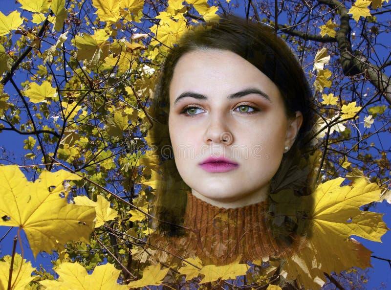 Ritratto di giovane bella ragazza con gli occhi verdi fotografie stock libere da diritti