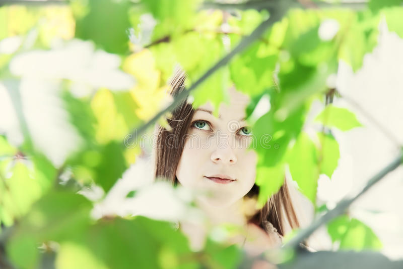 Ritratto di giovane bella ragazza nel fogliame immagine stock
