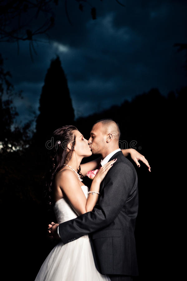 Ritratto di giovane coppia sposata immagini stock libere da diritti