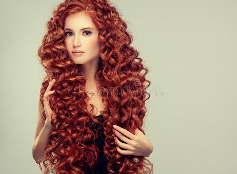 Ritratto di giovane, giovane modello attraente con capelli rossi densi, lunghi, ricci incredibili Capelli crespi fotografie stock libere da diritti