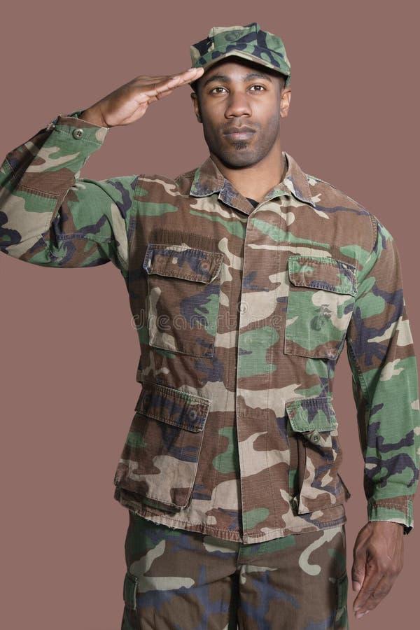 Ritratto di giovane soldato degli Stati Uniti Marine Corps dell'afroamericano che saluta sopra il fondo marrone fotografie stock libere da diritti