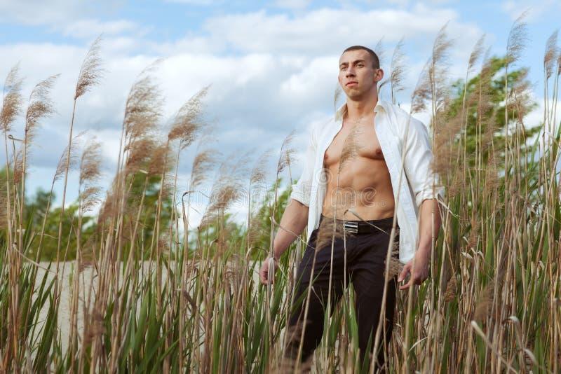 Ritratto di giovane uomo atletico bello fotografie stock
