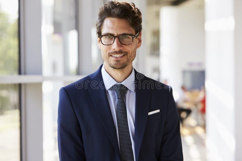 Ritratto di giovane uomo professionale in vestito immagine stock