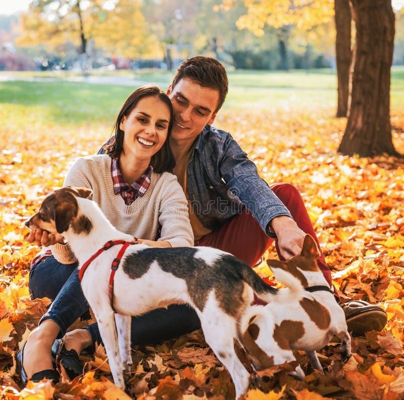 Ritratto di giovani coppie felici che si siedono all'aperto nel parco di autunno immagini stock