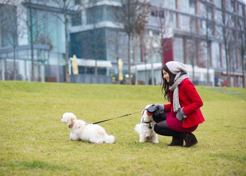 Ritratto di inverno dei cani di camminata della donna incinta immagini stock libere da diritti