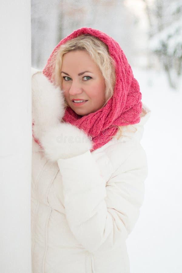 Ritratto di inverno di bella donna fotografie stock libere da diritti