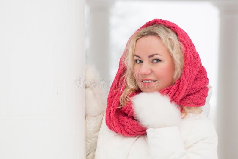 Ritratto di inverno di bella donna fotografia stock