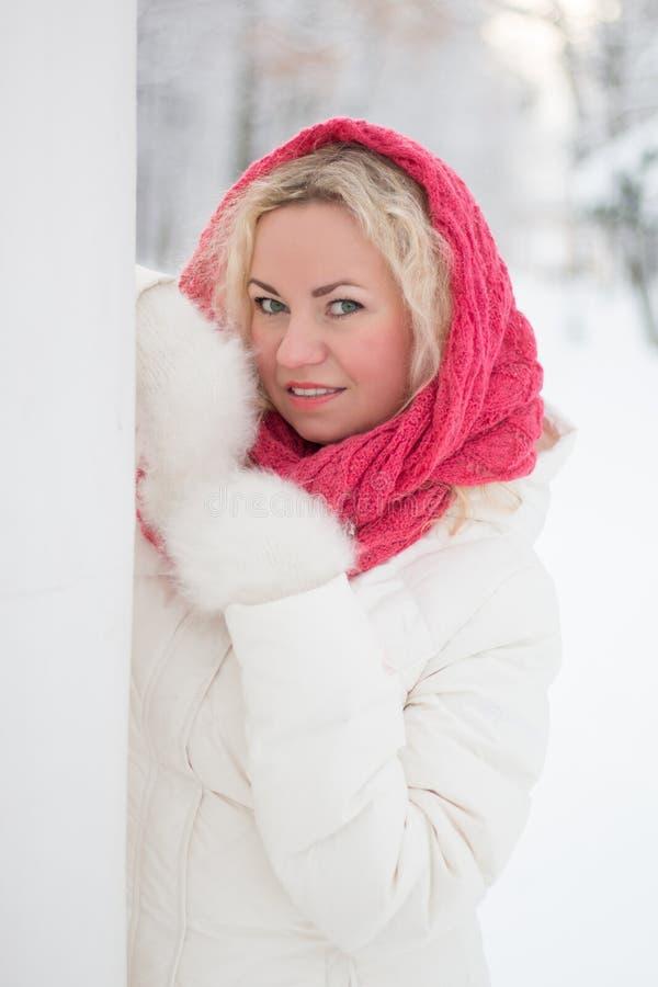 Ritratto di inverno di bella donna immagine stock libera da diritti