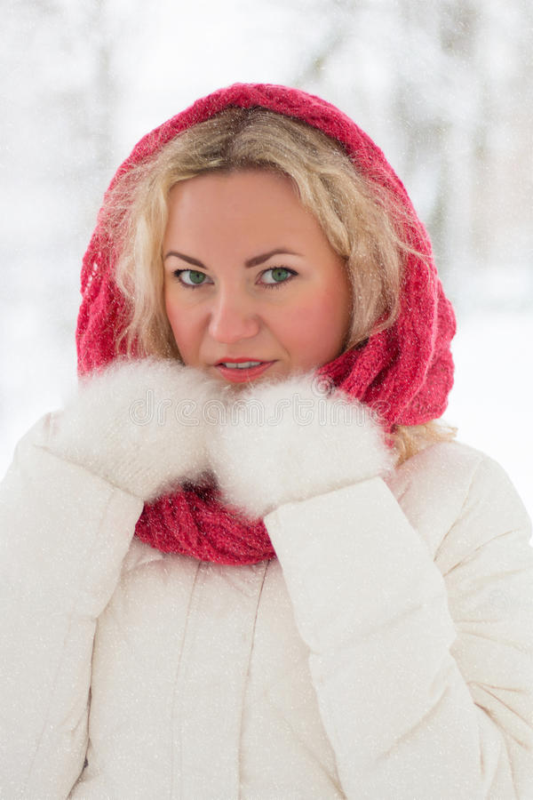 Ritratto di inverno di bella donna fotografia stock libera da diritti