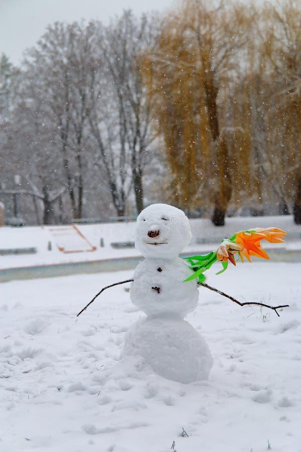 Ritratto di inverno di uno sconosciuto solo fotografie stock