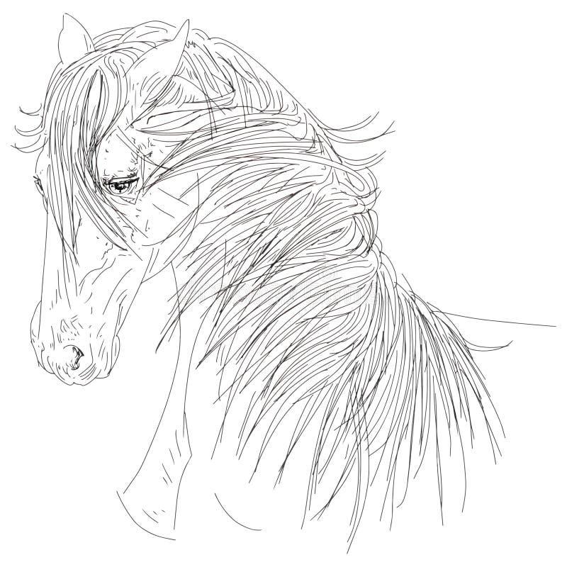 Ritratto di loro illustrazione al tratto capo della criniera del cavallo illustrazione vettoriale