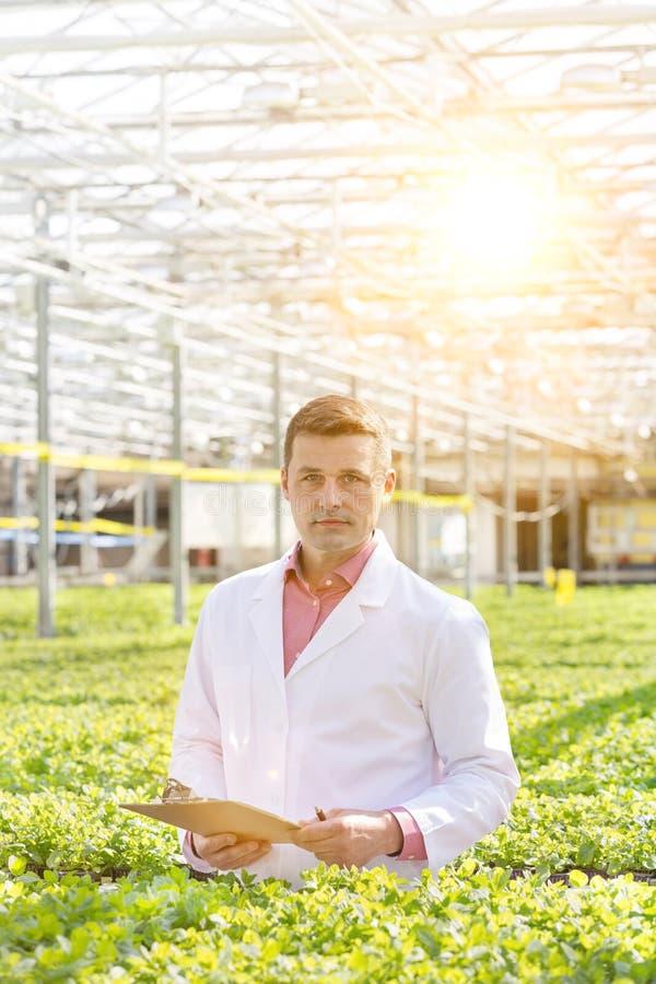 Ritratto di scienziato fiducioso in piedi con cartellone tra le erbe in serra fotografie stock libere da diritti