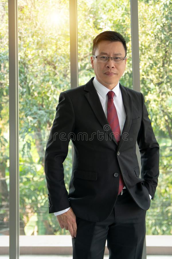 Ritratto di sicuro nella condizione matura formalmente vestita dell'uomo d'affari davanti ad una grande finestra moderna dell'uff fotografia stock