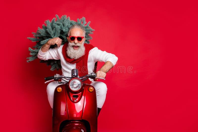 Ritratto di un allegro pensionato che porta un abete con occhiali da sole guanti in bicicletta con un maglione bianco isolato sop immagini stock libere da diritti