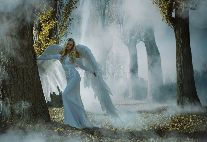 Ritratto di un angelo elegante e biondo immagine stock
