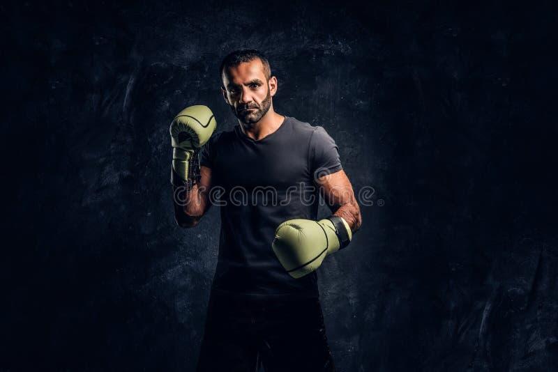 Ritratto di un combattente professionale brutale in una camicia nera ed in guanti Foto dello studio contro una parete strutturata fotografia stock