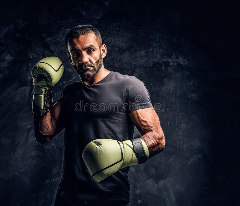 Ritratto di un combattente professionale brutale in una camicia nera ed in guanti Foto dello studio contro una parete strutturata immagini stock