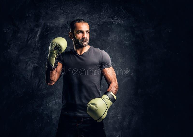 Ritratto di un combattente professionale brutale in una camicia nera ed in guanti Foto dello studio contro una parete strutturata fotografie stock libere da diritti